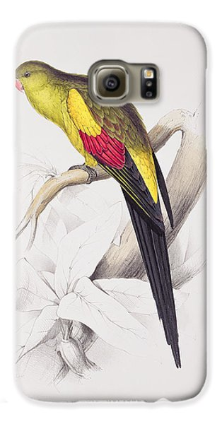 Black Tailed Parakeet Galaxy S6 Case by Edward Lear