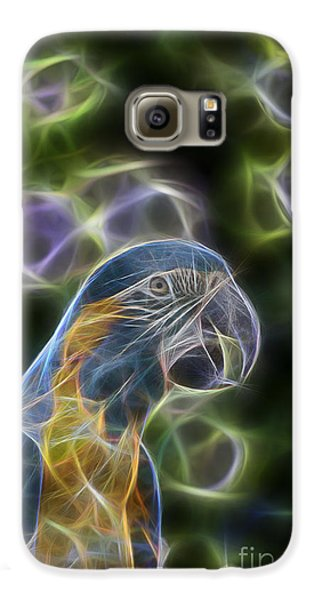 Blue And Gold Macaw  Galaxy S6 Case by Douglas Barnard