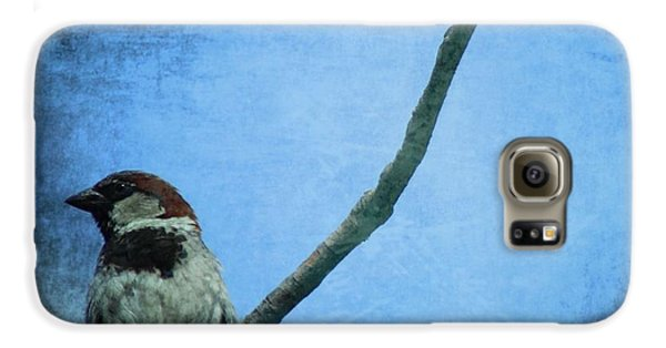 Sparrow On Blue Galaxy S6 Case by Dan Sproul