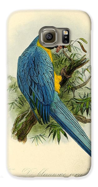 Blue Parrot Galaxy S6 Case by J G Keulemans