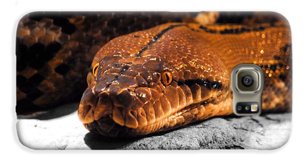 Boa Constrictor Galaxy S6 Case by Jai Johnson