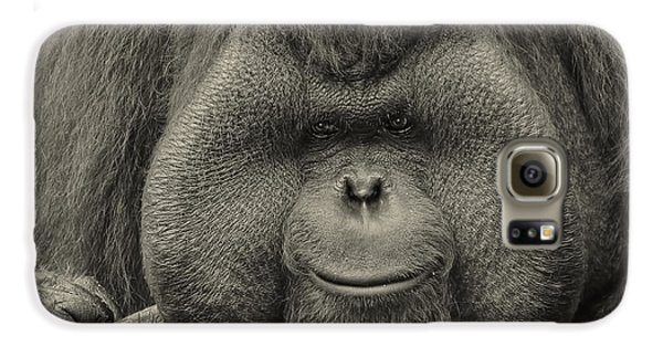 Bornean Orangutan II Galaxy S6 Case by Lourry Legarde
