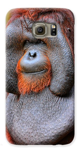 Bornean Orangutan Iv Galaxy S6 Case by Lourry Legarde