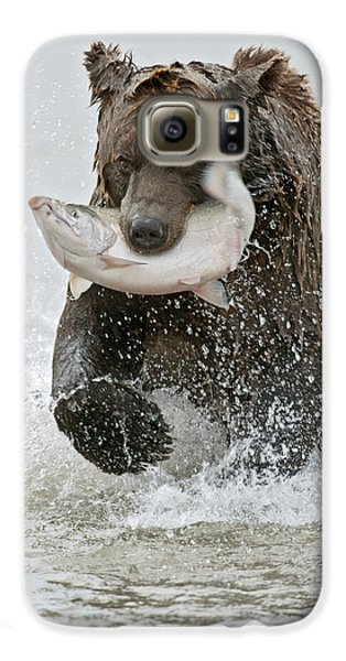 Brown Bear With Salmon Catch Galaxy S6 Case by Gary Langley