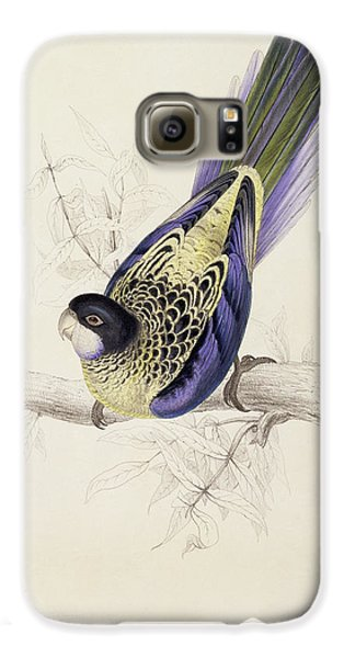 Browns Parakeet Galaxy S6 Case by Edward Lear