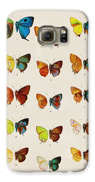 Butterfly Plate Galaxy S6 Case by Pati Photography