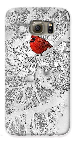 Cardinal In Winter Galaxy S6 Case by Ellen Henneke