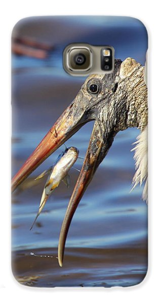 Catch Of The Day Galaxy S6 Case by Bruce J Robinson