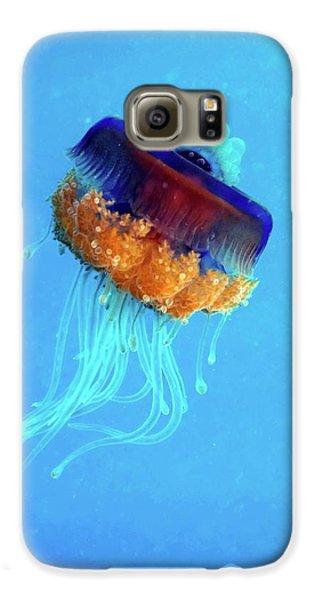Cauliflower Jellyfish Galaxy S6 Case by Louise Murray