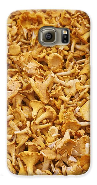 Chanterelle Mushroom Galaxy S6 Case by Anonymous