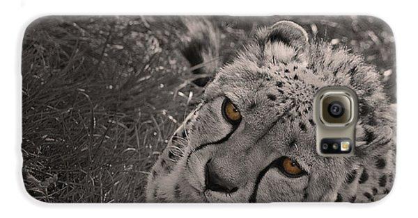 Cheetah Eyes Galaxy S6 Case by Martin Newman