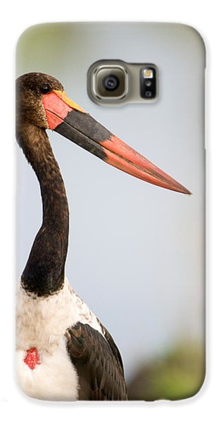 Close-up Of A Saddle Billed Stork Galaxy S6 Case by Panoramic Images