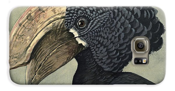 Crested Hornbill Galaxy S6 Case by Louis Agassiz Fuertes