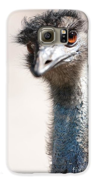 Curious Emu Galaxy S6 Case by Carol Groenen