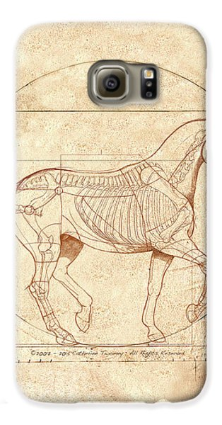 da Vinci Horse in Piaffe Galaxy S6 Case by Catherine Twomey