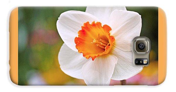 Daffodil  Galaxy S6 Case by Rona Black