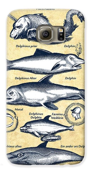 Dolphins - Historiae Naturalis - 1657 - Vintage Galaxy S6 Case by Aged Pixel