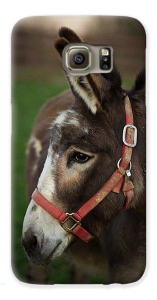 Donkey Galaxy S6 Case by Shane Holsclaw