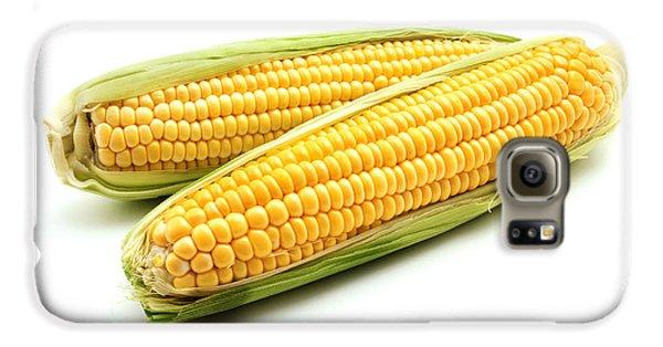 Ears Of Maize Galaxy S6 Case by Fabrizio Troiani