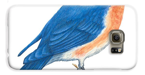 Eastern Bluebird Galaxy S6 Case by Anonymous