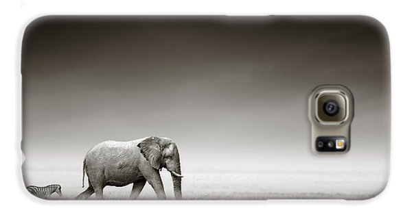 Elephant With Zebra Galaxy S6 Case by Johan Swanepoel