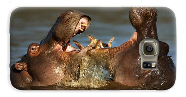 Fighting Hippo's Galaxy S6 Case by Johan Swanepoel