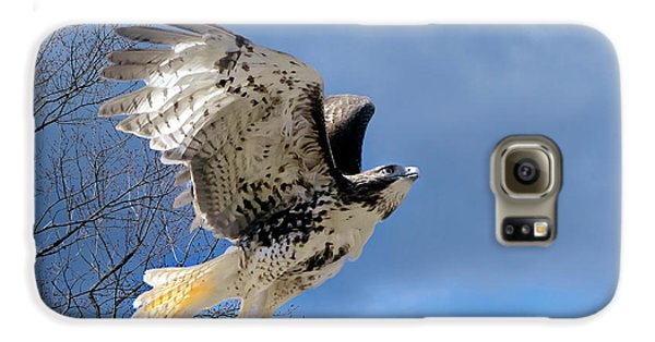 Flight Of The Red Tail Galaxy S6 Case by Bill Wakeley
