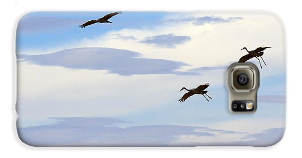 Flight Of The Sandhill Cranes Galaxy S6 Case by Mike  Dawson