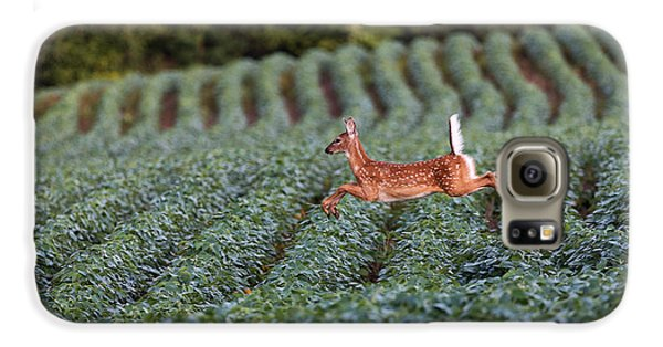 Flight Of The White-tailed Deer Galaxy S6 Case by Everet Regal