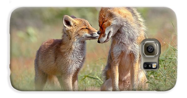 Fox Felicity - Mother And Fox Kit Showing Love And Affection Galaxy S6 Case by Roeselien Raimond