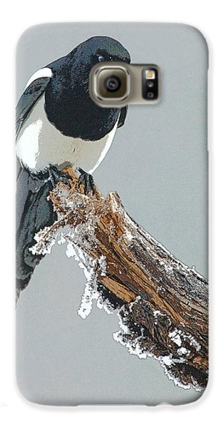 Frosted Magpie- Abstract Galaxy S6 Case by Tim Grams