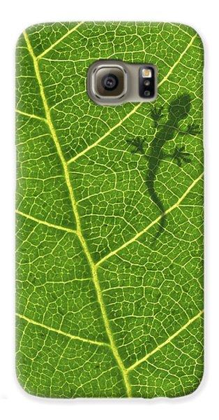 Gecko Galaxy S6 Case by Aged Pixel