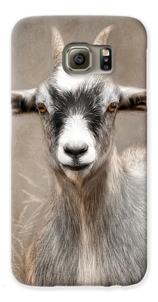 Goat Portrait Galaxy S6 Case by Lori Deiter