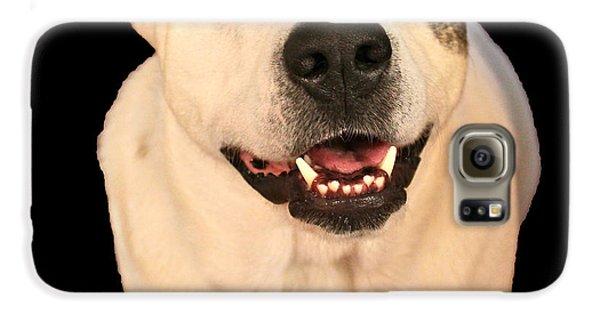Good Dog Samsung Galaxy Case by Bellesouth Studio