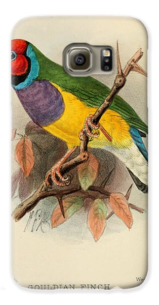 Gouldian Finch Galaxy S6 Case by J G Keulemans