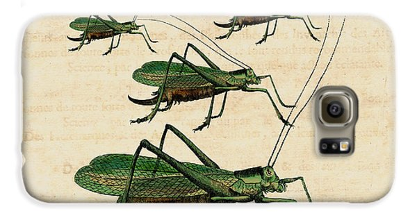 Grasshopper Parade Galaxy S6 Case by Antique Images