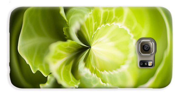 Green Cabbage Orb Galaxy S6 Case by Anne Gilbert