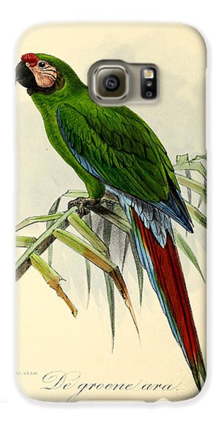 Green Parrot Galaxy S6 Case by J G Keulemans