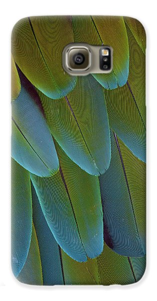 Green-winged Macaw Wing Feathers Galaxy S6 Case by Darrell Gulin