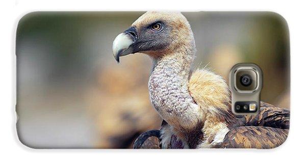 Griffon Vulture Galaxy S6 Case by Nicolas Reusens
