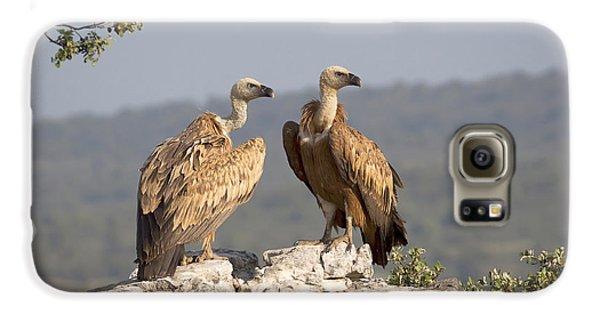 Griffon Vulture Pair Extremadura Spain Galaxy S6 Case by Gerard de Hoog