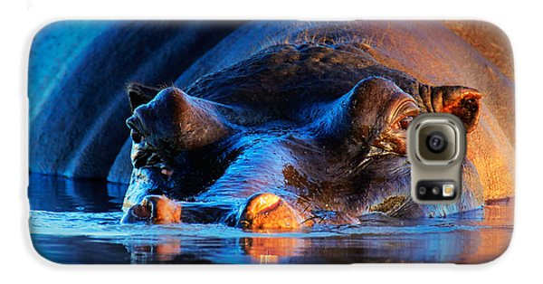 Hippopotamus  At Sunset Galaxy S6 Case by Johan Swanepoel