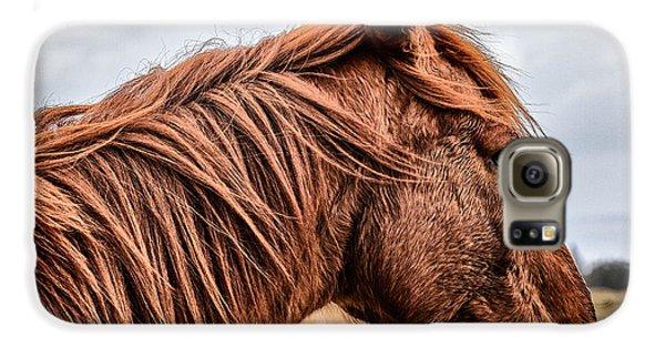 Horsey Horsey Galaxy S6 Case by John Farnan