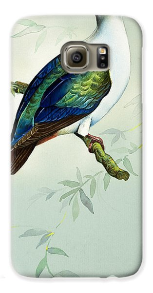 Imperial Fruit Pigeon Galaxy S6 Case by Bert Illoss