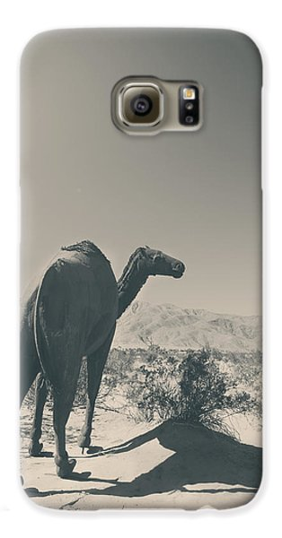 In The Hot Desert Sun Galaxy S6 Case by Laurie Search