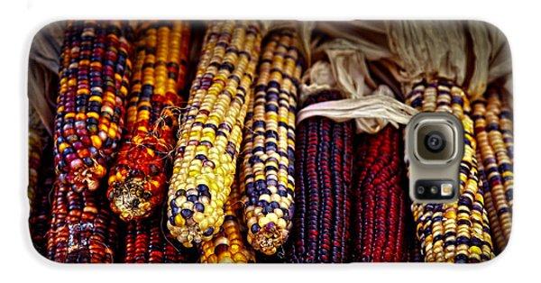 Indian Corn Galaxy S6 Case by Elena Elisseeva