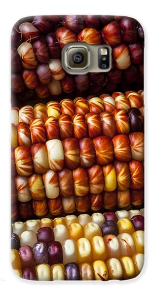 Indian Corn Harvest Time Galaxy S6 Case by Garry Gay