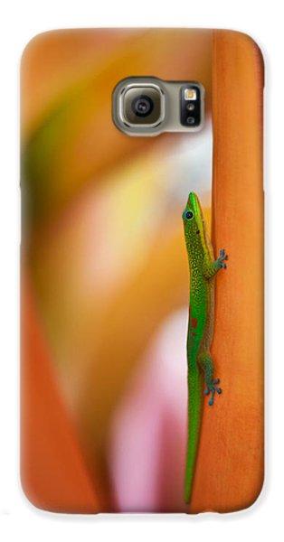 Island Friend Galaxy S6 Case by Mike Reid