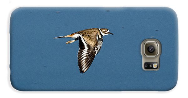 Killdeer In Flight Galaxy S6 Case by Anthony Mercieca