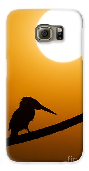 Kingfisher Sunset Silhouette Galaxy S6 Case by Tim Gainey